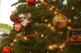 5 recycled ideas for your old christmas tree birds and blooms