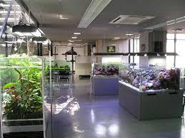 shop light for growing plants farming agriculture supply shop malaysia aquarium led grow light