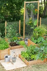 full image for 8 diy small space vegetable garden terrace