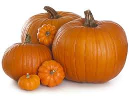 pumpkin pie or scary facts to home tips for