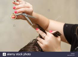 professional hairdresser doing haircut men u0027s hair haircut with