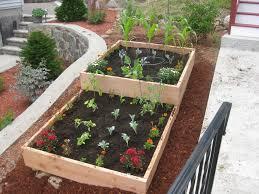 small garden ideas vegetables vegetable urban backyard design with