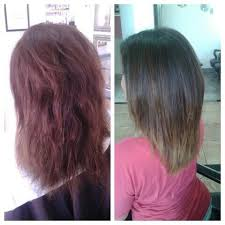 where can you buy olaplex hair treatment 92 best olaplex images on pinterest hair colour hair colours and