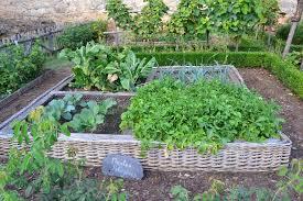 5 gardening tips for beginners gardenaware com