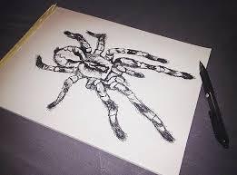 ghost ornamental tarantula sketch by joel fenton on deviantart
