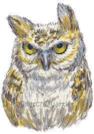 owl item hand drawn owl digital clipart with transparent background for