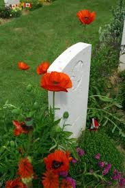 126 best remembrance day images on pinterest remembrance day