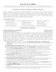 Resume For Human Resources Curriculum Vitae Sample Human Resource Manager Augustais