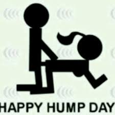 Dirty Hump Day Memes - 35 dirty hump day meme photos pictures graphics images picsmine