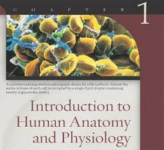 Anatomy And Physiology By Ross And Wilson Pdf Free Download Anatomy And Physiology 1 Quizlet Page 2 Human Anatomy And