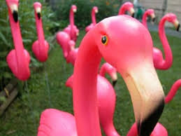 there are more plastic flamingos in america than there are living