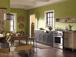 Best Color Kitchen Cabinets Paint Colors For Kitchens With Golden Oak Cabinets Lumaxhomes