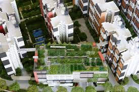 roof garden floor plan the green area with pavements is the