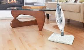 gorgeous wood floor steam cleaner bona spray mop vs shark steam