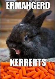 Funny Bunny Memes - the funniest bunny meme contest lounge schizophrenia forums