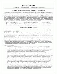 pmo cv resume sample budgeting analyst resume business analyst resume template free samples examples business analyst resume template free samples examples