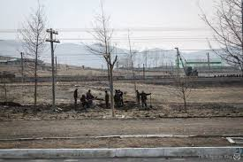 smoking weed in backyard on smoking weed in north korea the bohemian blog