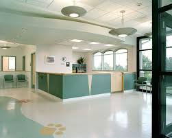 3 color palettes that work for veterinary practice hospital