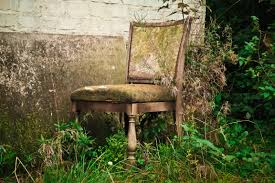 Mysterious Abandoned Places Free Images Wood Flower Chair Atmosphere Mystical Moss