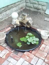 backyard catfish farming business backyard how start
