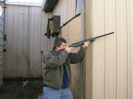 pest control and airguns afield on airguns