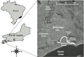 Map Of Rio De Janeiro Rheingantz M L Oliveira Santos L G Waldemarin H F And