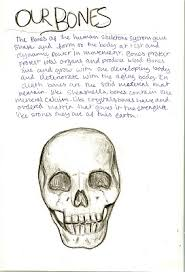 Anatomy And Physiology Class Waldorf 8th Grade Human Anatomy Bones Main Lesson Book