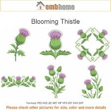 blooming thistle floral flowers seasons machine embroidery