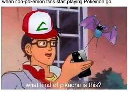 Pokemon Kid Meme - 20 memes only pokemon go fans will understand page 3 of 21