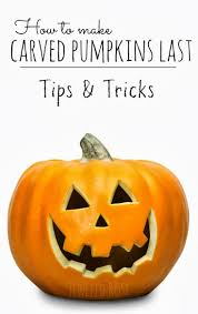 top 25 best how to carve pumpkins ideas on pinterest carving