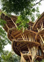 sustainable bamboo tree house in bali this house was designed by