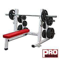 Professional Weight Bench Olympic Weight Bench Fitness Gym Equipment Fitnessscape