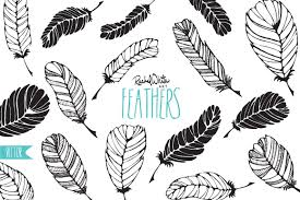 feathers vector u0026 png illustrations creative market