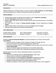 marketing resume format resume format for 2 years experience new sales and marketing