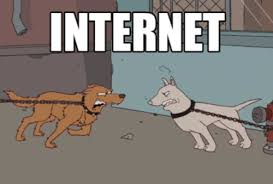 Memes And Gifs - best gif internet vs reality gifs