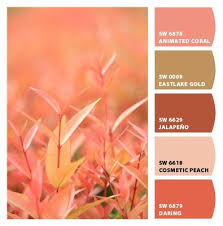 257 best colors sherwin williams chip it images on pinterest