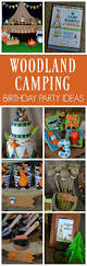 best 25 camping parties ideas on pinterest campfire birthday