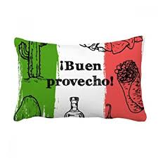 insert cuisine amazon com mexico sketch cuisine flag cactus throw lumbar