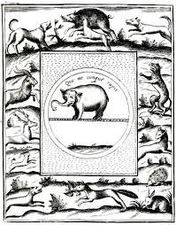 animal u2013 wild miscellaneous vintage printable at swivelchair