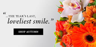 Flower Shops Inverness - san antonio florist u0026 flower delivery for every occasion