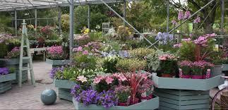 home page clonmel garden centre ireland
