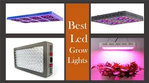 best grow lights for vegetables led grow lights buying guide for growing vegetables cannabis