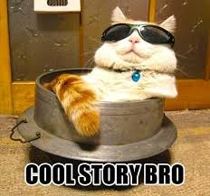 Cool Cat Meme - cool story cat meme slapcaption com on we heart it