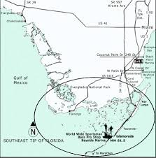 Map Of Homestead Florida by Your Florida Keys Fishing Guide