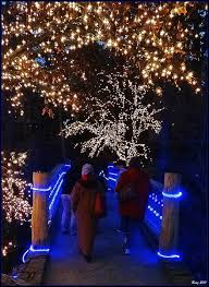 garvan gardens christmas lights 2016 christmas lights at garvan woodland garden my town pinterest