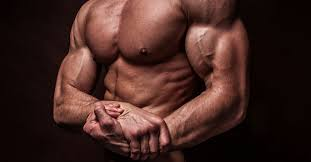 anabolic halo all in one muscle building review healthy mens