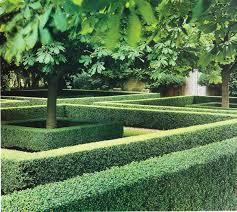 image of hedge simple garden ideas 11 amazing garden hedge ideas