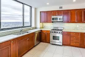 condominium kitchen designs luxury condo floor plans condos