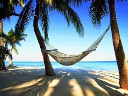 notes from isla mexico in a hammock