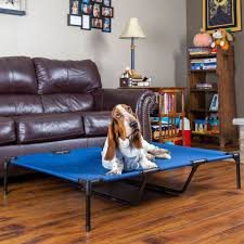 Bed In Living Room Lucky Dog Elevated Dog Bed Db2037 Xl Pet Accessories Discount